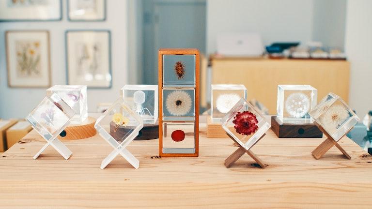 透明度が非常に高い樹脂に、花や種子、鉱物を閉じ込めた「Sola cube」シリーズ