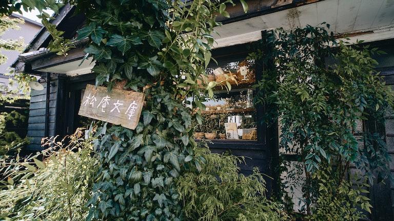 住宅街の中に突然現れる大きなモチの木と『松庵文庫』のプレートが目印