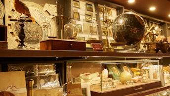 店内には剥製や地球儀、化石などミュージアム感溢れるアイテムが目白押し。別世界のような雰囲気です