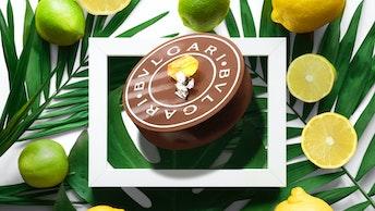 質の高いダージリン茶葉の芳醇な香りと爽やかなレモンの香りが楽しめる一粒「ダージリン・レモン」