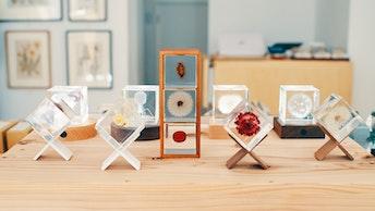 ひとつでも重ねても。自分なりのディスプレイを楽しめるSola  cube(¥3,580〜/税抜)