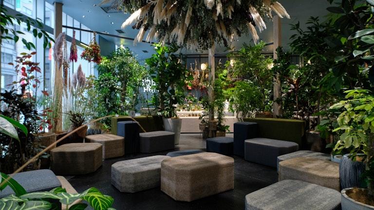 店舗に併設されているグリーンに囲まれた休憩スペースは、誰でも自由に利用できる