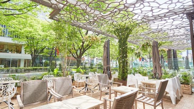 表参道のケヤキ並木望む、開放感のあるテラス席